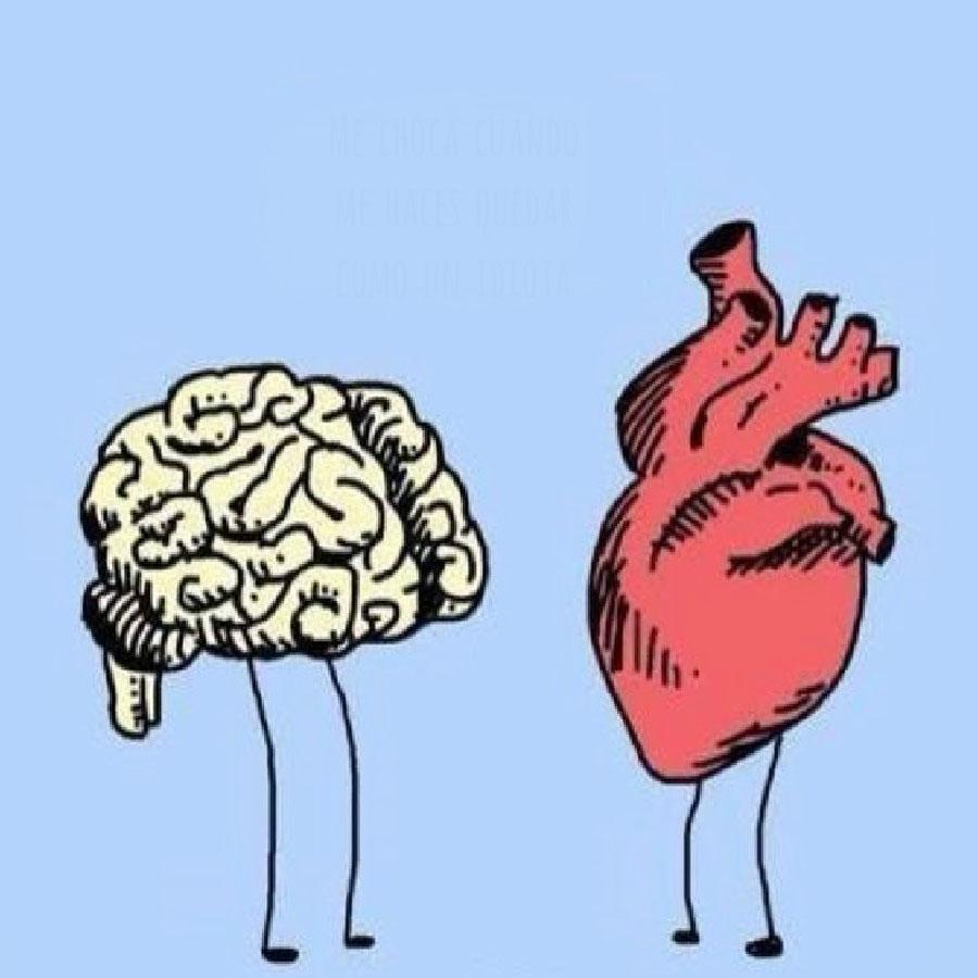 Мозг против сердца. Кто кого