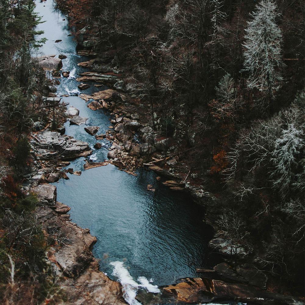 Стоит ли плыть по течению?